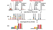 Erickson et al (2017) Mol Cell